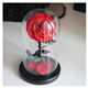 Latest flower shop supplies new design forever rose preserved flowers in glass