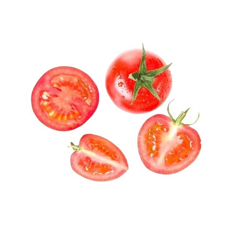 Sale best quality cherry tomato extract and cherry tomato indoor sweet cherry tomatoes