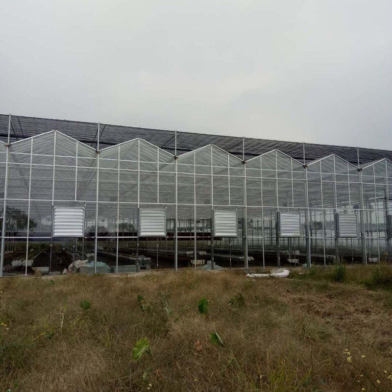 Factory hot new products Commercial Garden Glass Greenhouse For Sale