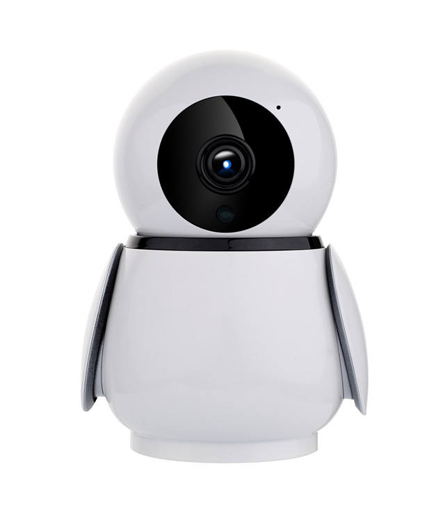 HD 1080P PTZ fish eye ip camera two way baby monitor ip camera Wireless camera
