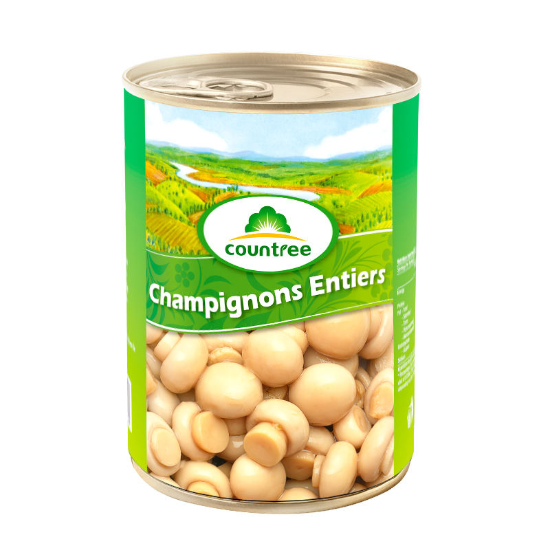 Famous Brand Fresh Canned Vegetables Canned Mushroom Whole With Good Quality