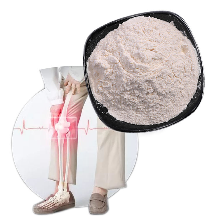 Global Sales High Quality Glucosamine Chicken Chondroitin Sulfate Powder