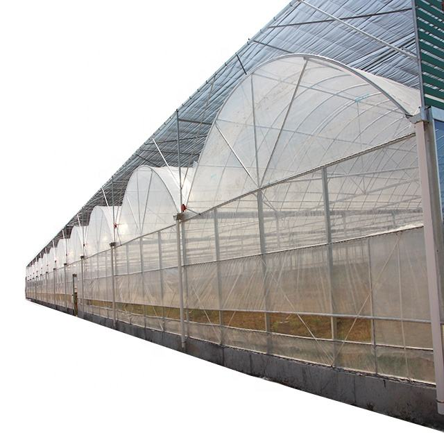 single arch greenhouse / spherical greenhouse from XinHe