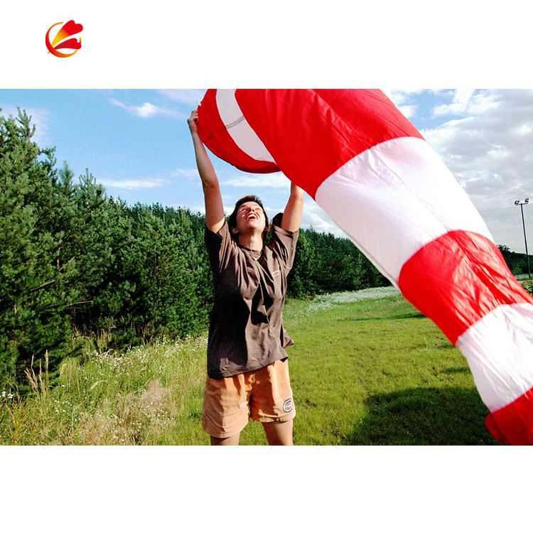 Professional windsock custom size 100% polyester high quality wind sock