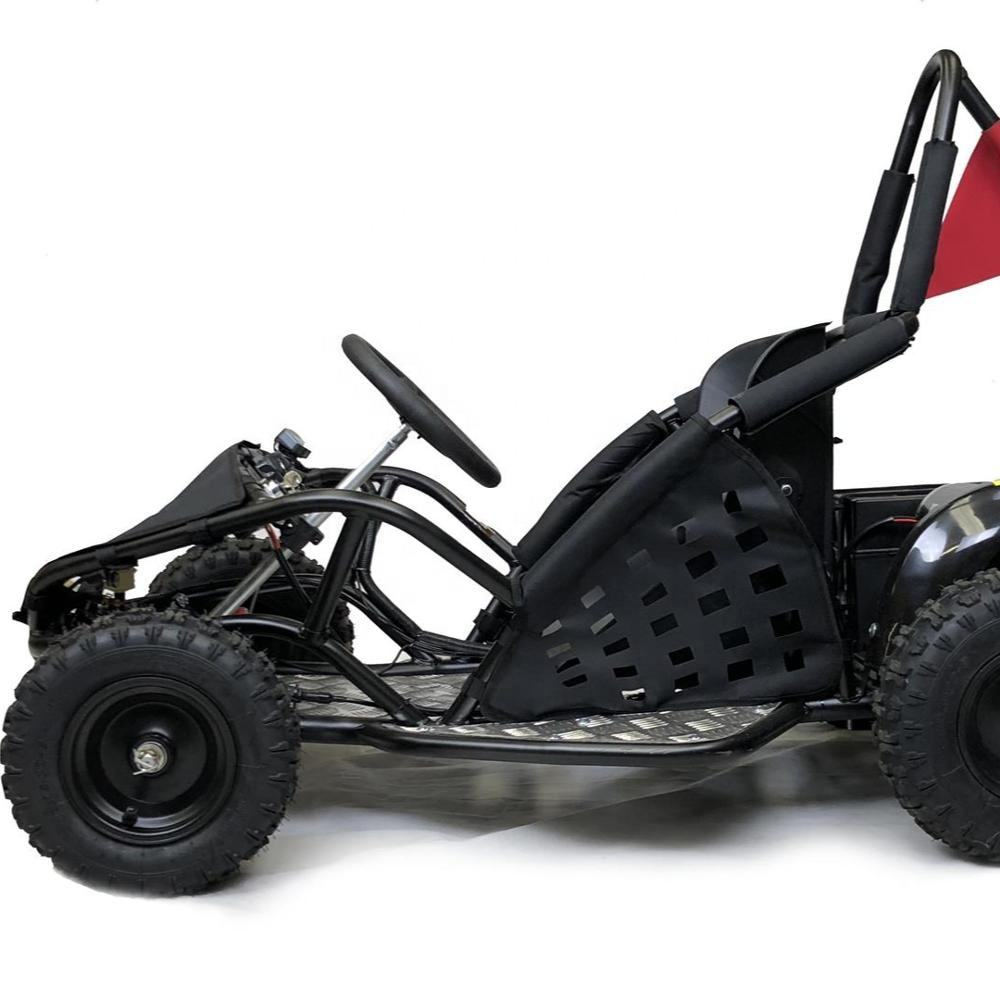 Big power 1000W 48V brushless motor mini electric go kart for kids, electric buggy, go cart