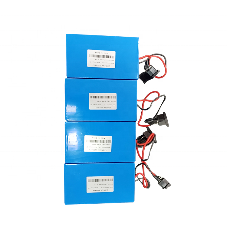 New design 12v 24v 48v 50ah 60ah lithium ion golf cart battery with bms and charger for ebike