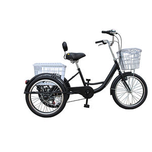 2020 new product Steel frame without battery 20inch three wheel cargo tricycle high quality saddle with a back tricycle