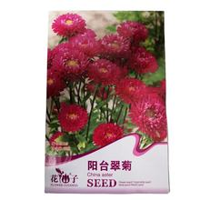 supply ready to ship China aster seeds with small flower seeds bags $0.59/bags