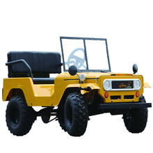 new style 150CC mini--willys  buggy  kids cars  mini utv