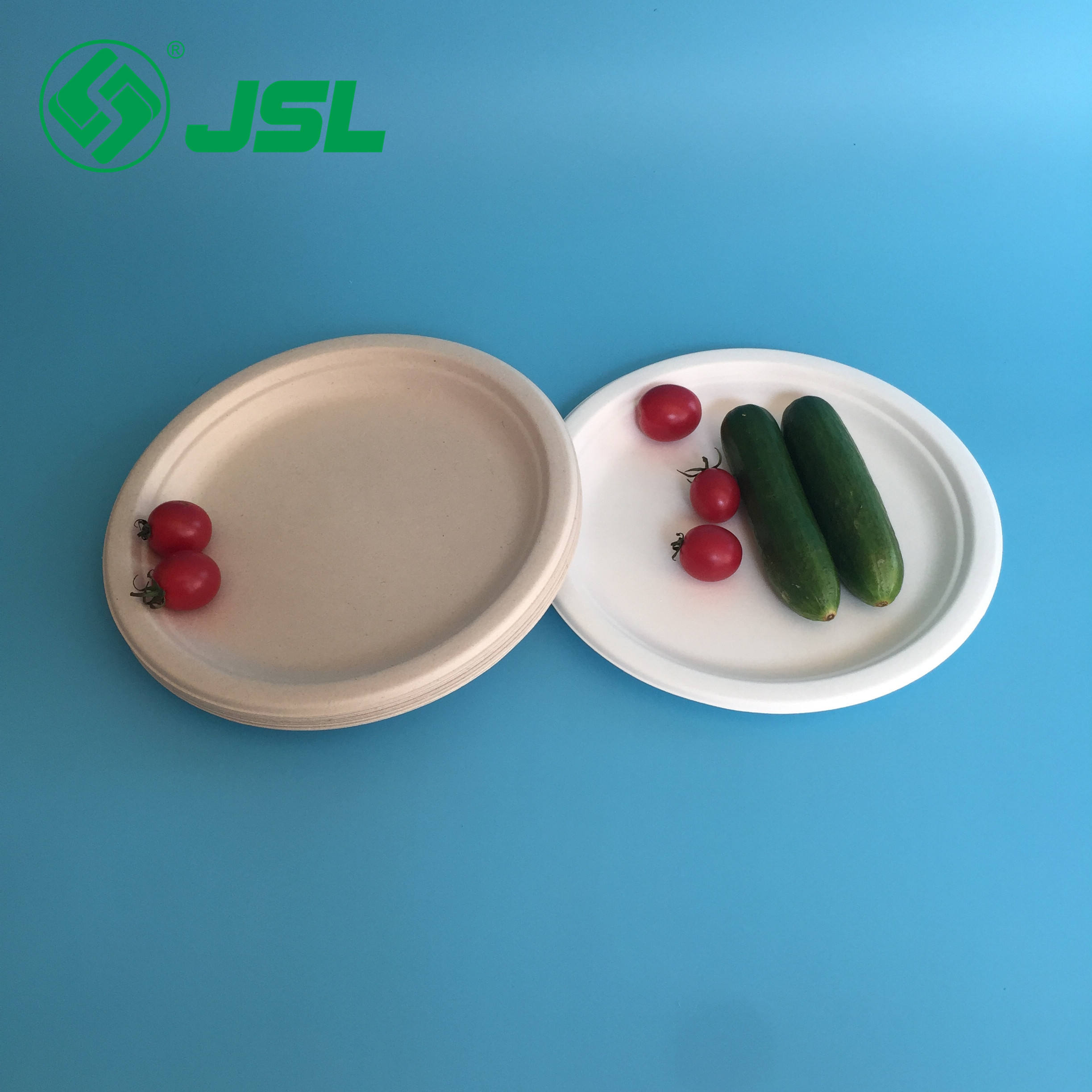 2019 Disposable Sugarcane Bagasse Tableware Round Plates