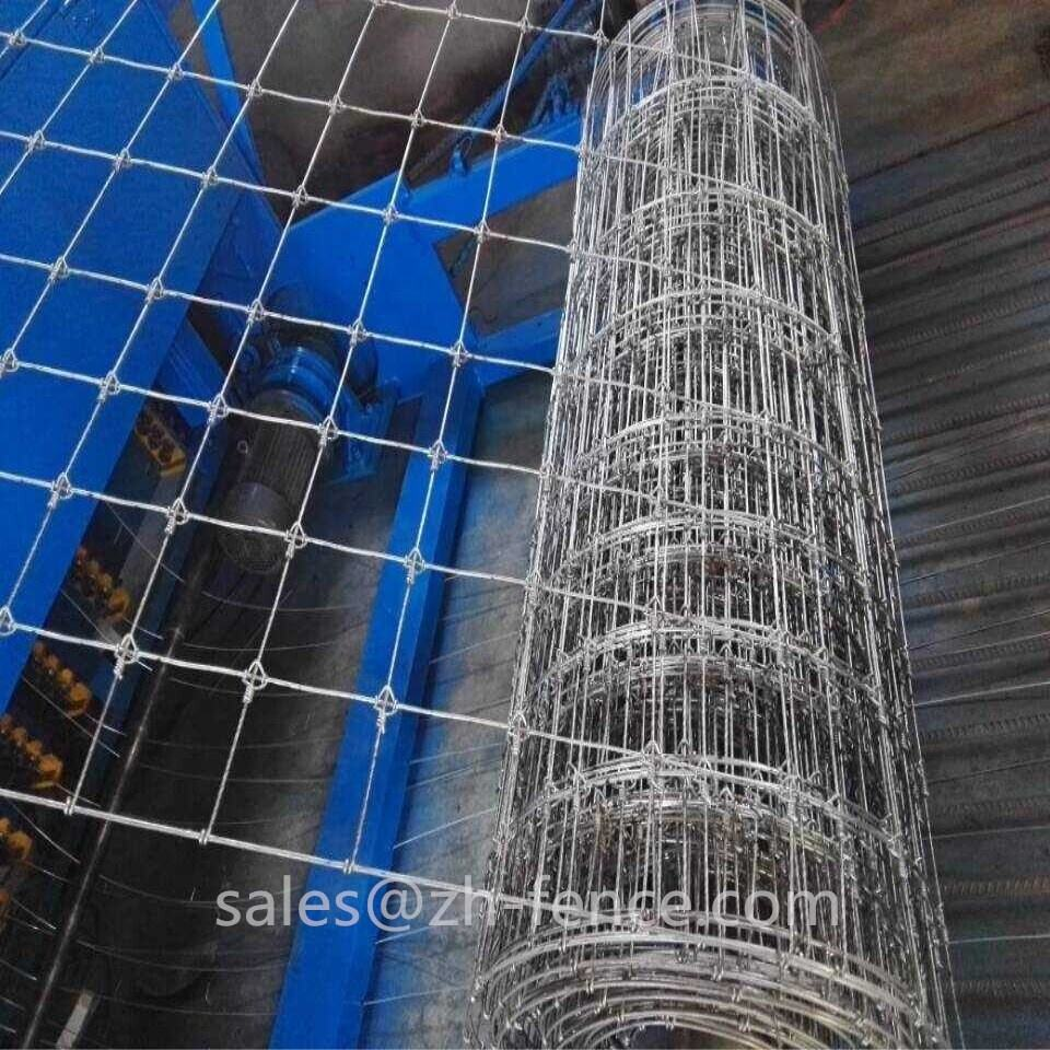 Hot Dip Galvanized cattle horse fixed knot fence