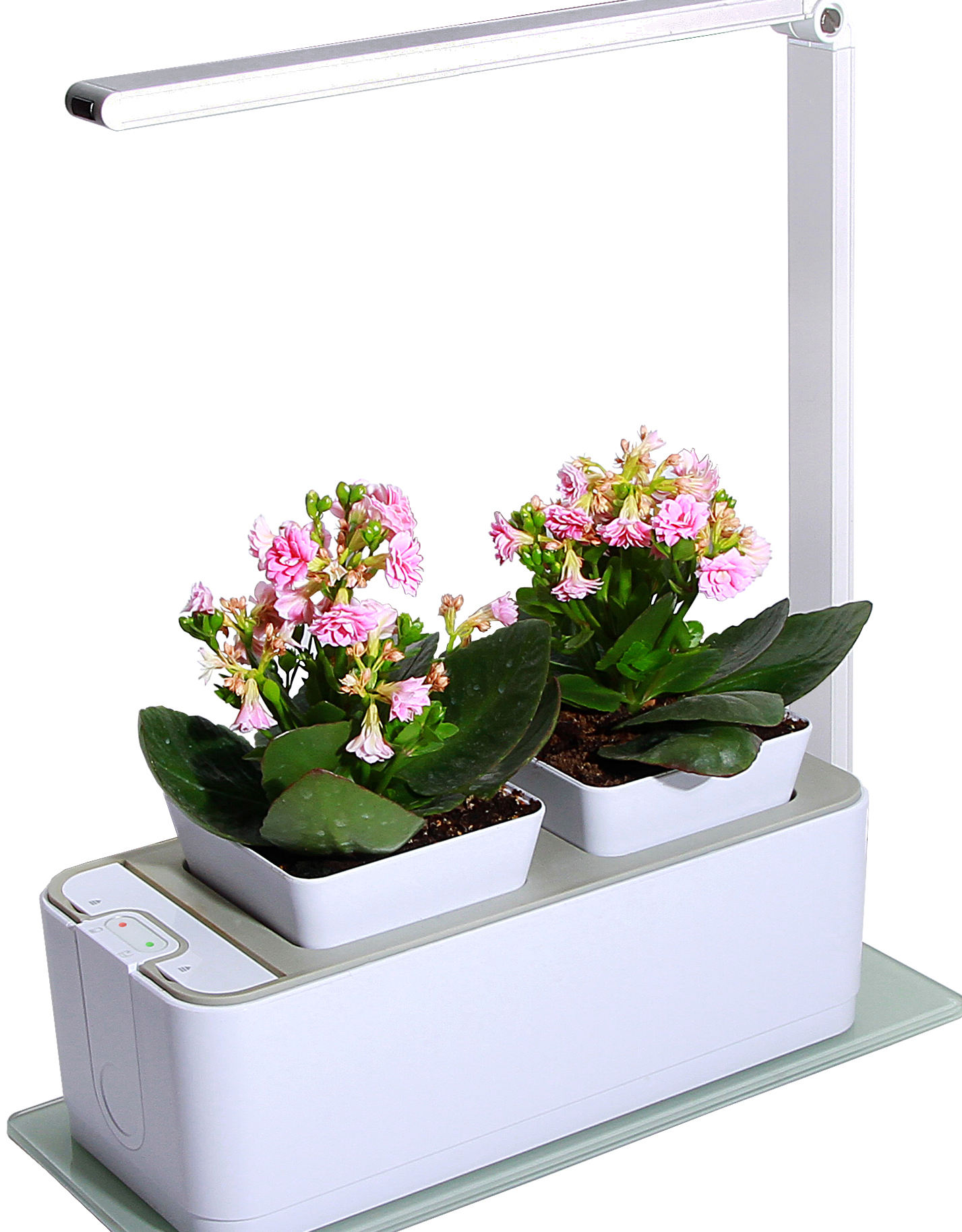 Hot organic hydroponic growing systems mini garden chepaer than click and grow indoor smart home garden with LED growing light