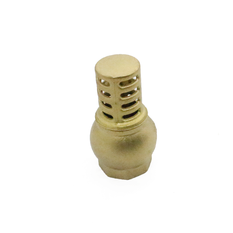 Green Valve water brass check valve with brass core
