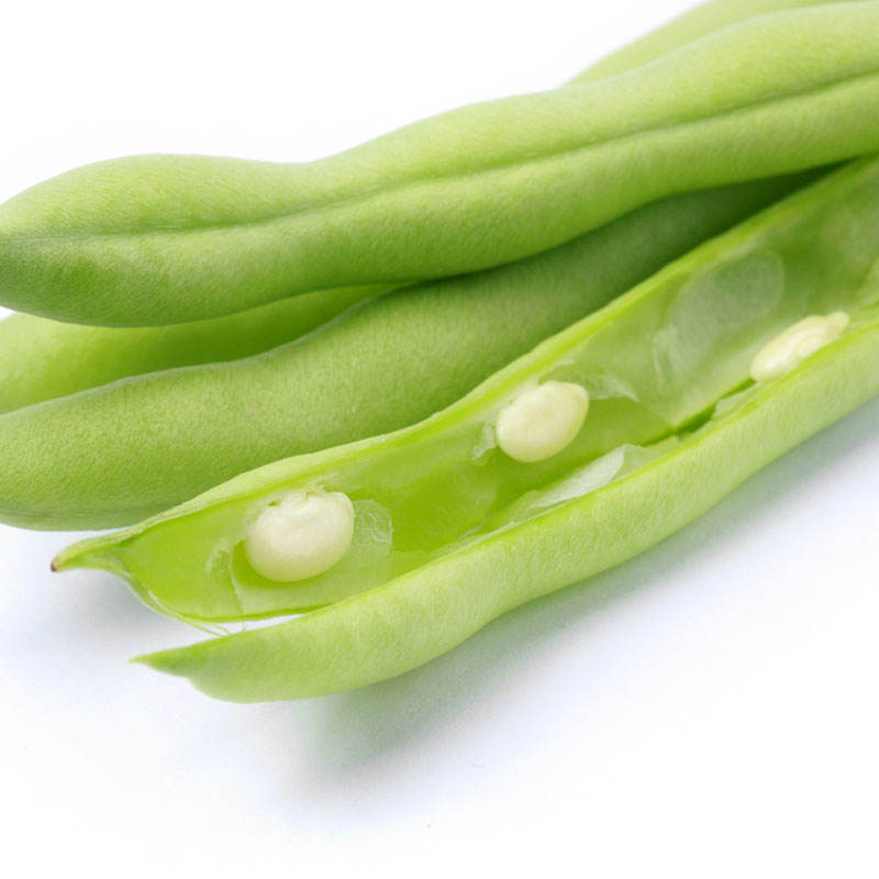 2020 Hot Sale Green Bean French Bean Seeds