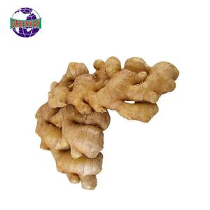Farm planting fresh high-quality production area ginger exporters