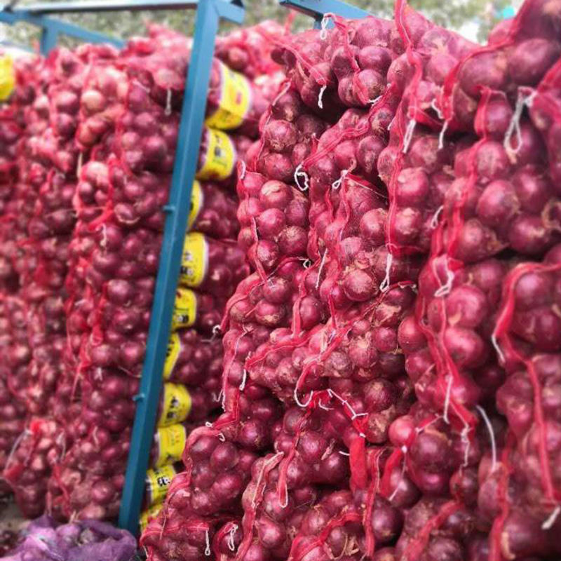 Best Quality Wholesale安いPrice Fresh Red Onion
