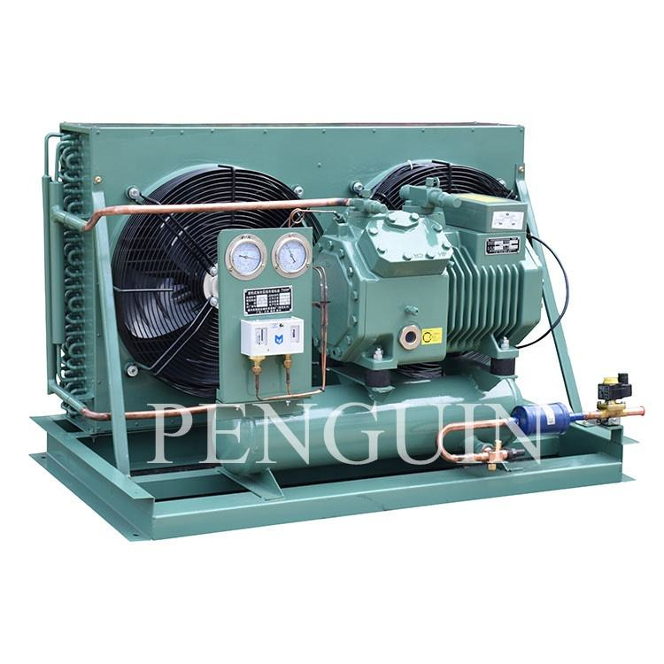 Bitzer Compressor Refrigeration Equipment Cooling System Condensing Unit for cold storage room