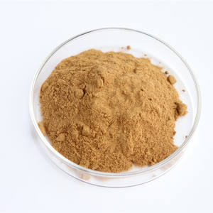Hot Selling Natural Ginger Root Extract Powder