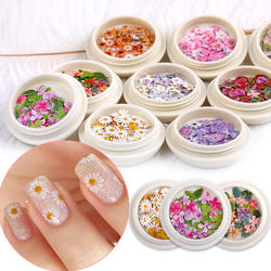 Nail art 3D all kinds of petal nail stickers jewelry sequins