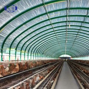 Anti-aging greenhouse film 200 micron PE film for farming