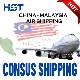 China freight forwarder air cargo shipping to Malaysia door to door logistics service