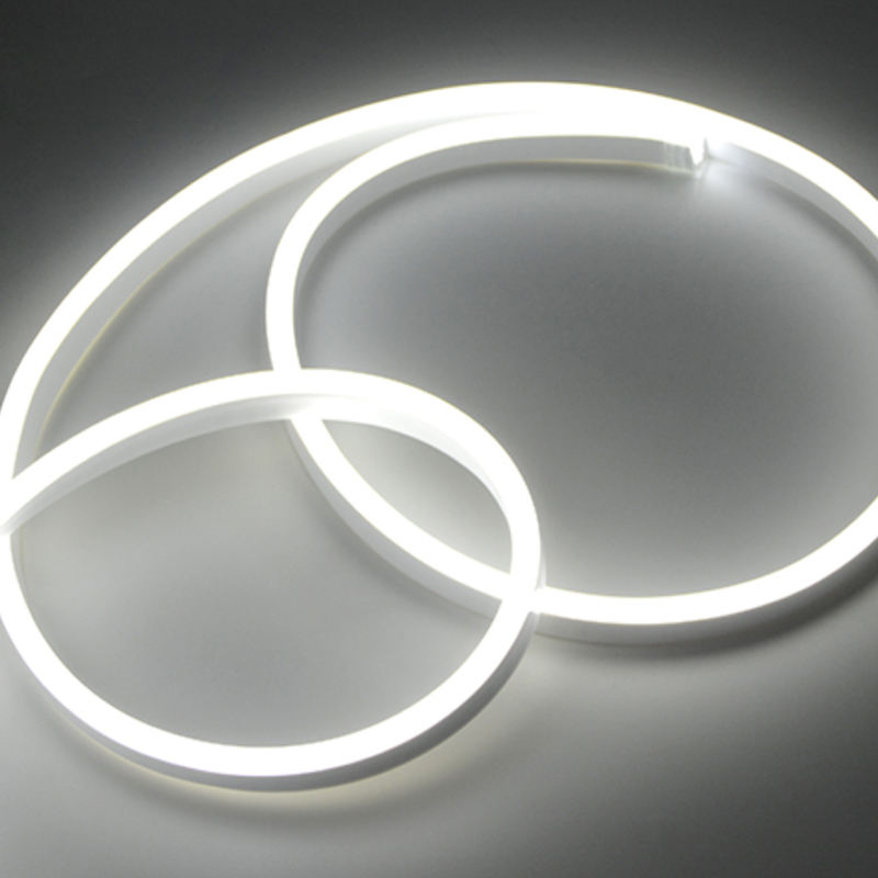 50 * 25mm 12V 2835 LED Neon light Strip fairy string 1m 2m 3m 4m 5m Neon Diode Tape Ribbon For Room Holiday Party Christmas