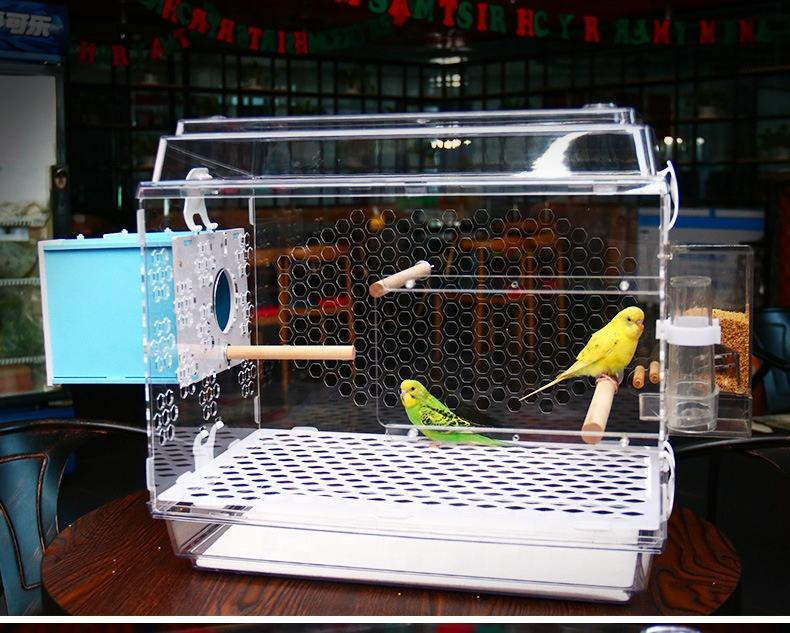 Parrot Pet Bird Bites Toy Chew Ball Toys Swing Cage Hanging Cockatiel Parakee Kl