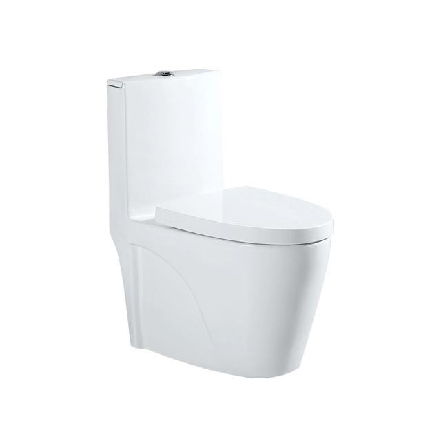 Bathroom design Siphonic Dual flush one piece wash downwc toilet