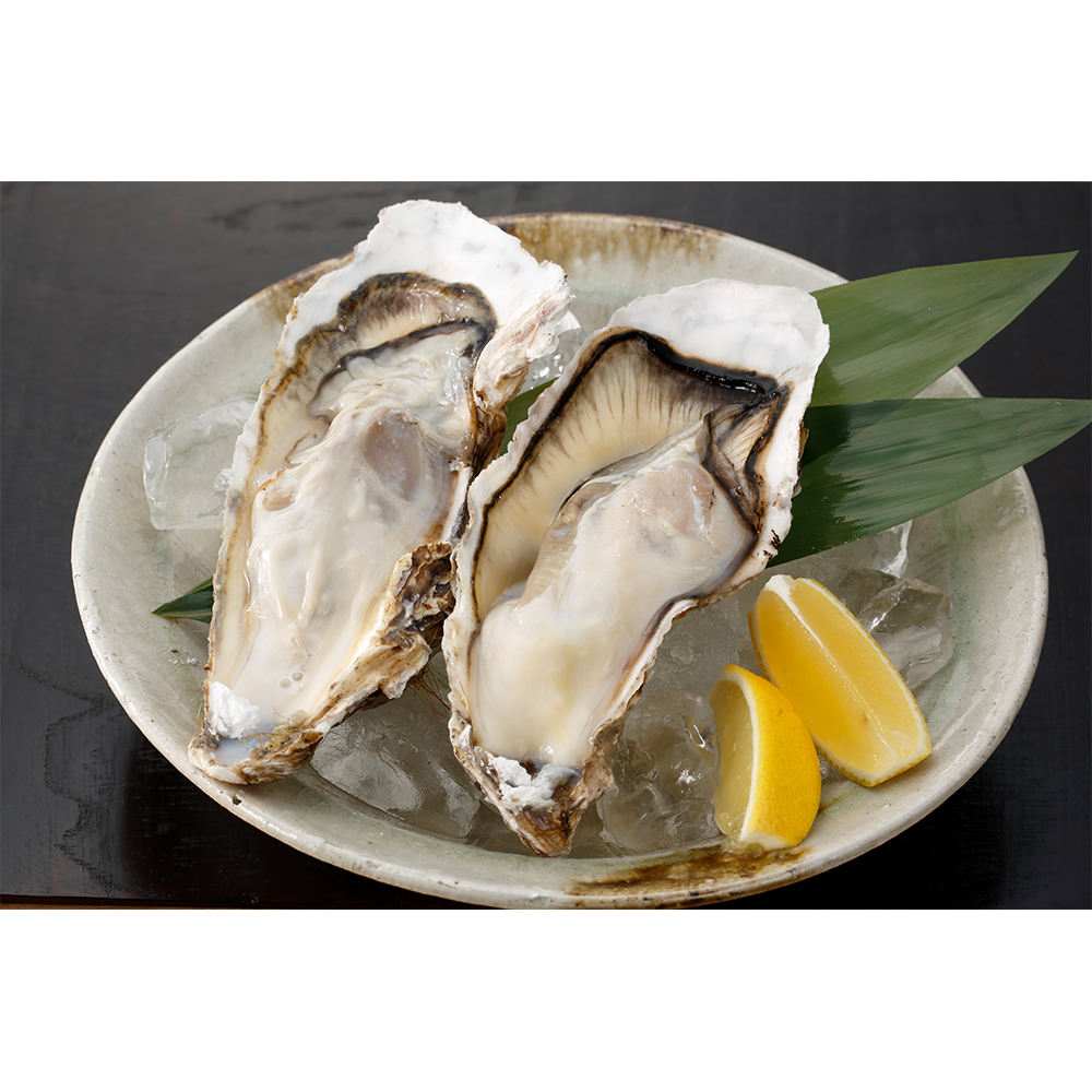 Whole Shell Oysters Fresh Instant Frozen Shrimp Frozen Seafood