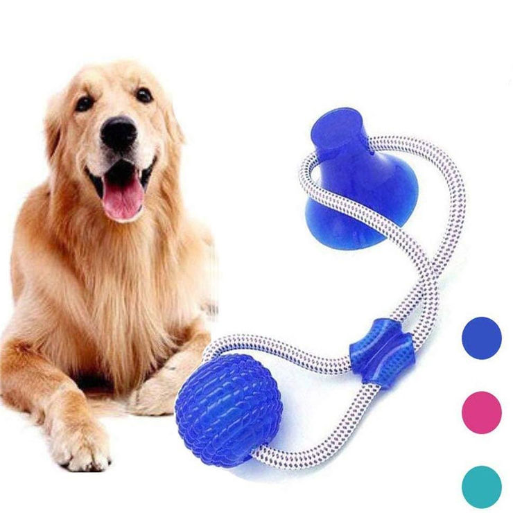 Amazon Hot Sale Multifunction Molar Bite Dog Toys Rubber Chew Ball Cleaning Teeth Safe Elasticity Suction Cup Dog Chew Toy