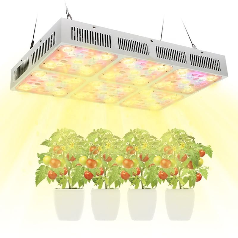 Led Grow Light Bloom Flower Veg Vegetable Double Switch 200W 300W 600W Cob Led Grow Light Full Spectrum