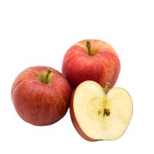 red fuji apple 2020 fresh apple