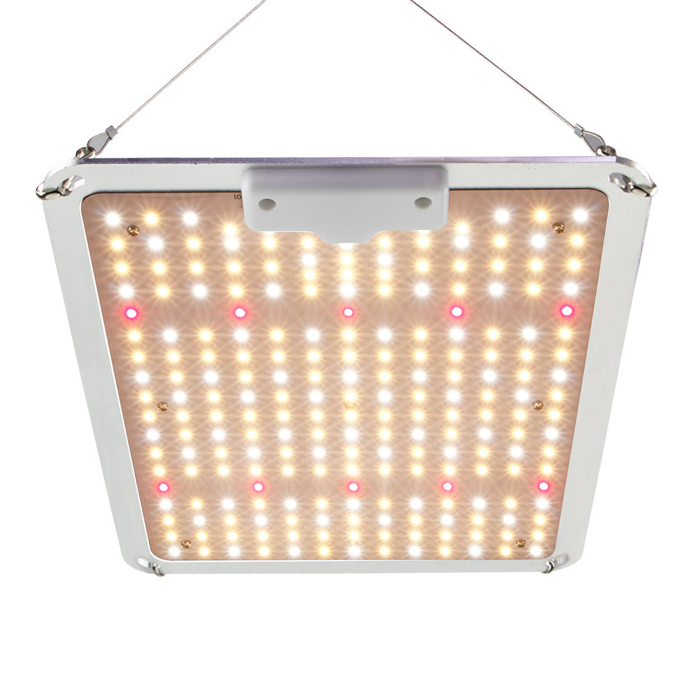 Samsung Quantum LED Grow Light Full Spectrum Spider SF-1000 Grow Lamp 120w LED Grow Light Hydroponic