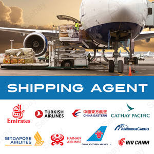 Air Cargo Service Freight Forwarder Door to Door Delivery Service China to Usa Canada UK Mexico Australia Germany