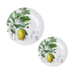 Supermarket Hotsale Lightweight Dishwasher Safe, Lemon Pattern Round Plates Melamine