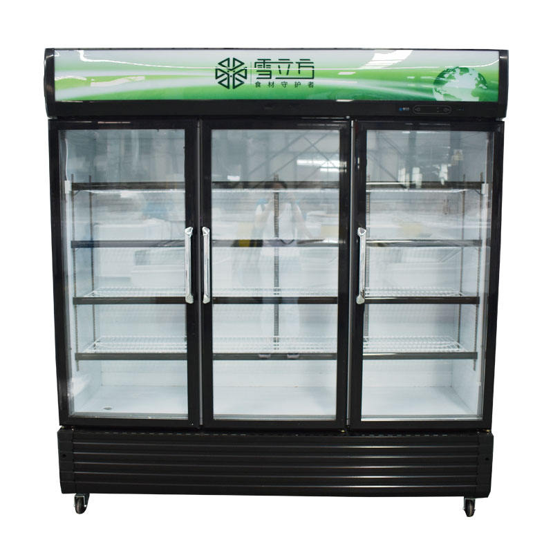 Professional in pakistan organizer modern pepsi 7up cool drinks fridge with great price