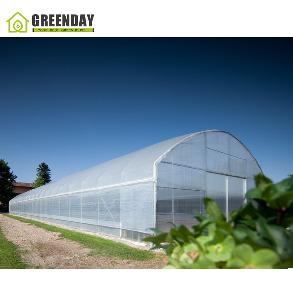 GREENDAY Small scale and cost-effective greenhouse with irrigation system