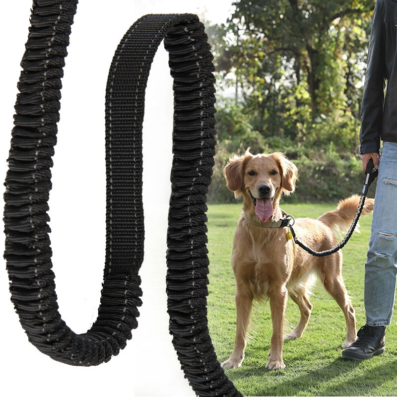 China Wholesale Custom Durable High Tenacity Pet Strap Band With Reflective Elastic 25Mm Dog Leashes Webbing