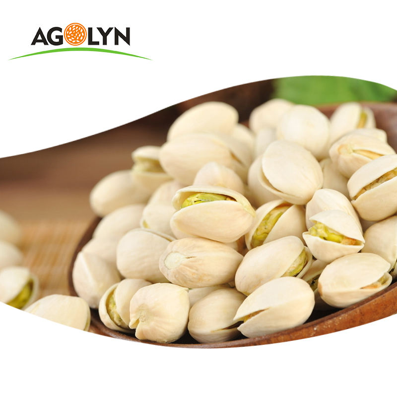 Inshell pistachios nuts iranian for sale
