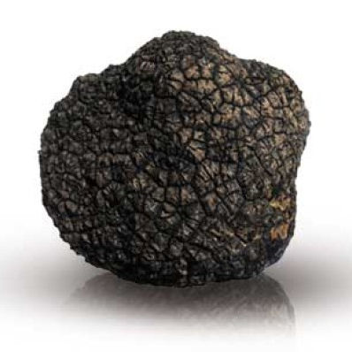 Whole TRUFFLE | Black Truffle | Italian Alba dried truffle
