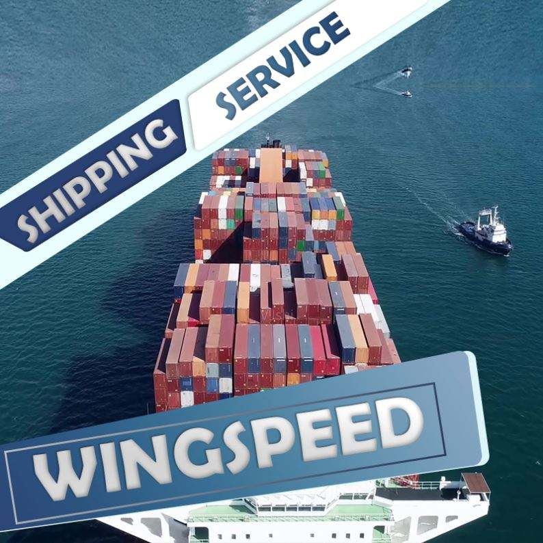 Freight Forwarder from shenzhen guangzhou China to USA Import/Export----Skype:bonmedlisa