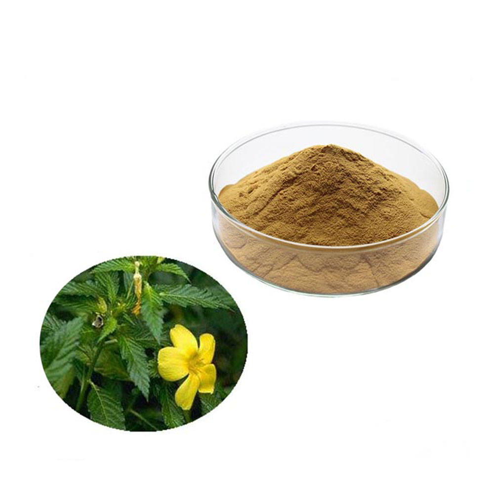 Manufacturer Supply Natural Damiana Leaf Extract powder 10:1 in bulk