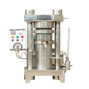 The sesame olive castor edible cold press essential oil extraction machine production equipment manufactures for home of europe