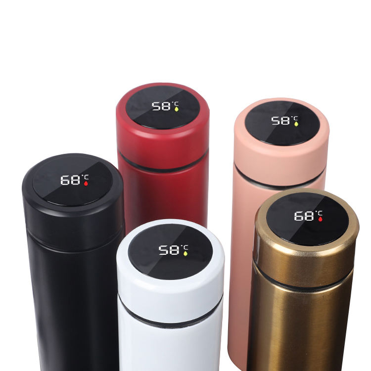 Double Wall Insulated Glass Thermos Cup 304 Stainless Steel Vacuum Flask With LED Temperature
