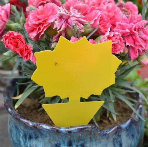 Yellow Butterfly Shape Sticky Glue Insect Fly killer Traps Flower Shaped Bird Shaped Insect Trap