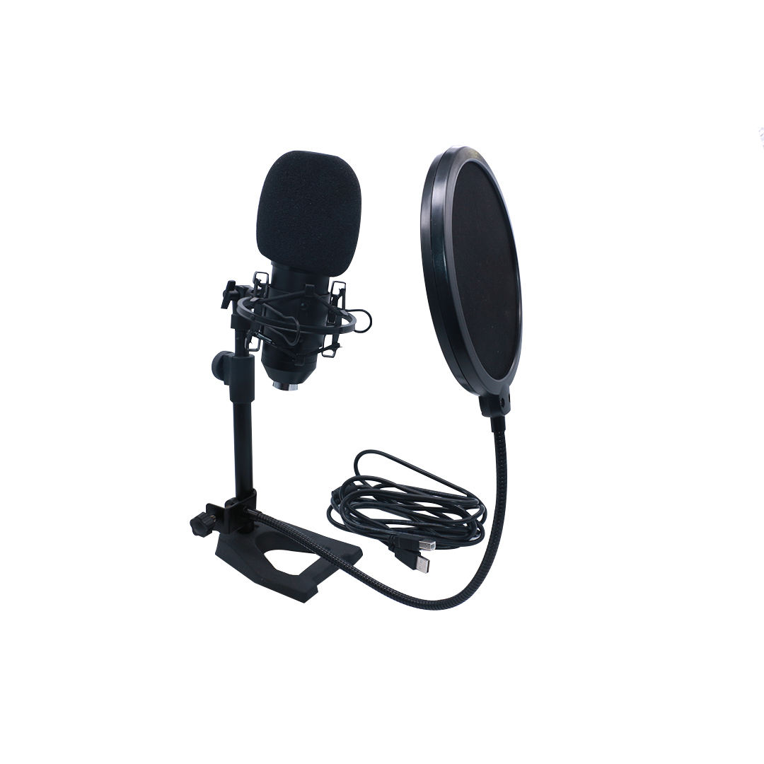 Accuracy Pro Audio EM-700 Hot sale New Design Podcast Plug & Play USB Condenser Microphone Stand Studio Set For Recording