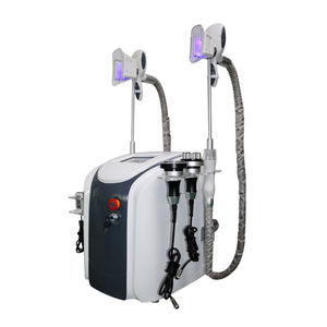 Best Selling Product 2 Cryo Handle Freeze Fat Cryolipolysis Machine for Sale