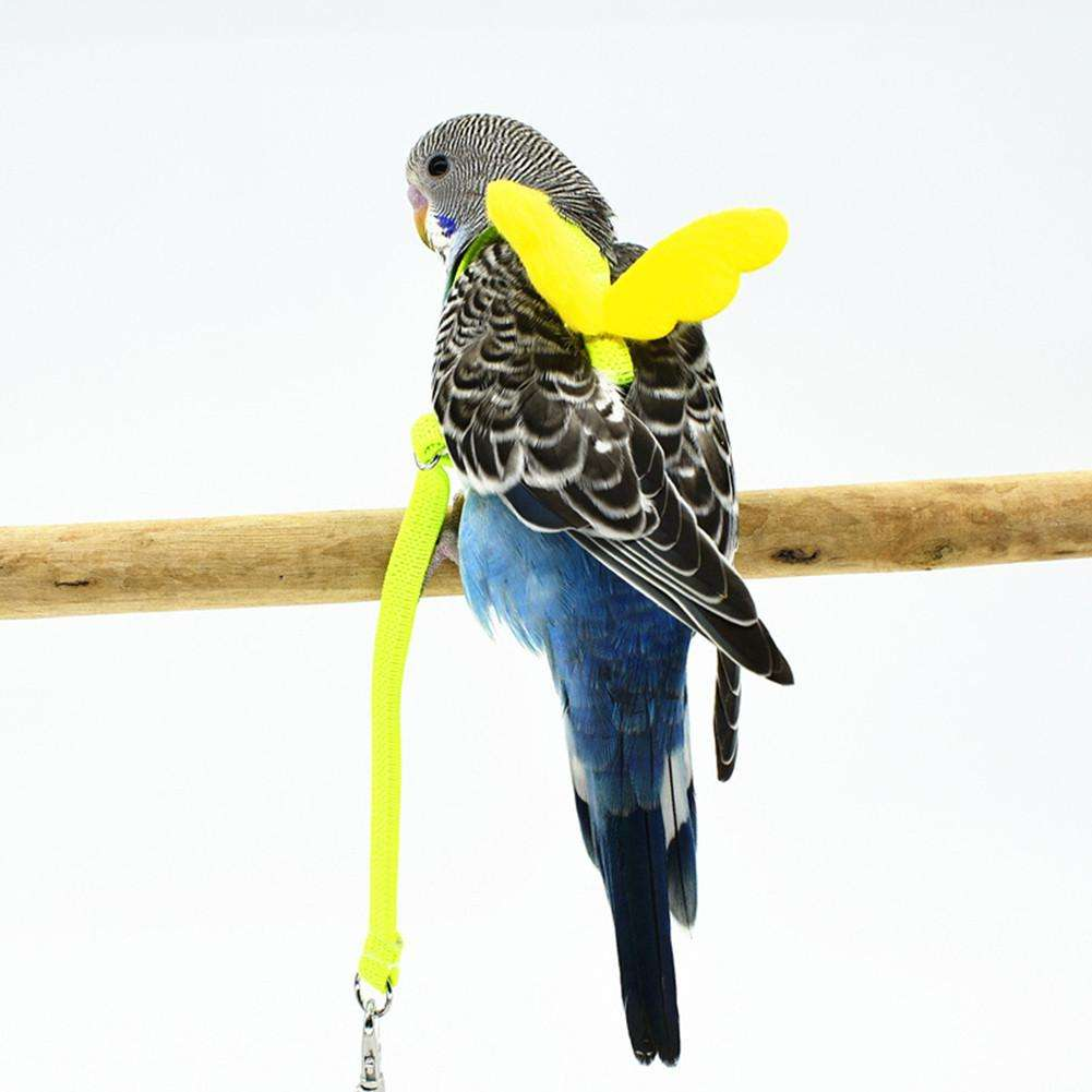 Pet Parrot Flying Rope Straps Outdoor Training Traction Rope Bird Harness Leash