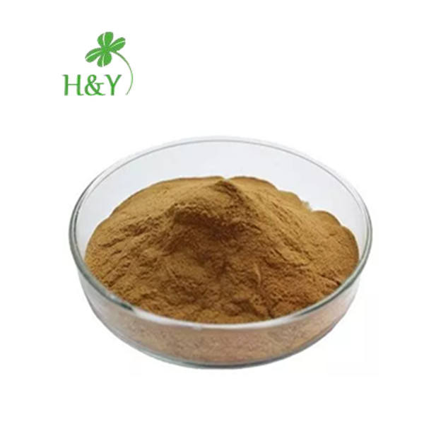 Turkey Tail Extract Coriolus Versicolor Polysaccharide 20%