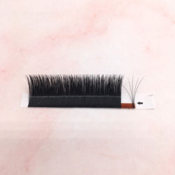 private label individual eyelash extensions easy fans bloomi